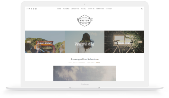 editor wordpress theme preview